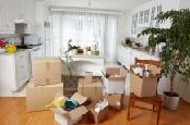 Estate Cleanout Supplies